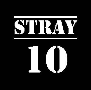 stray-10.jpg